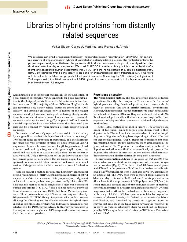 Libraries of hybrid proteins from distantly related sequences