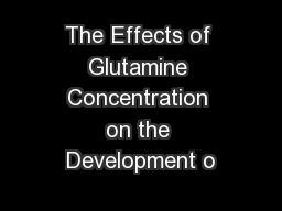 The Effects of Glutamine Concentration on the Development o