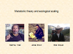 Metabolic theory PowerPoint PPT Presentation