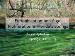 Eutrophication and PowerPoint PPT Presentation