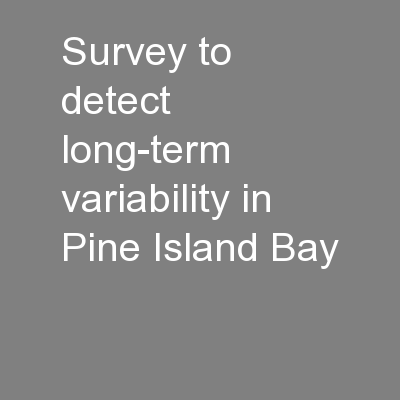 Survey to detect long-term variability in Pine Island Bay