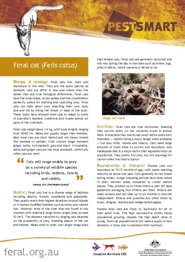 Biology & ecology: Feral cats live, hunt and reproduce in the wild. Th