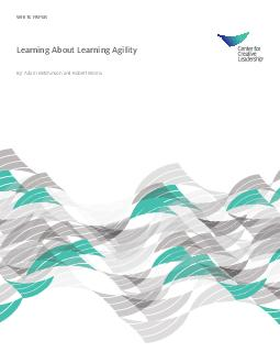 WHITE PAPER Learning About Learning Agility By Adam Mitchinson and Robert Morris  Contents Introduction What is Learning Agility Exploring the Learning Agility Assessment Inventory Learning Agility a