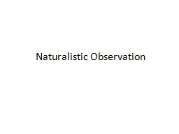 naturalistic observation project