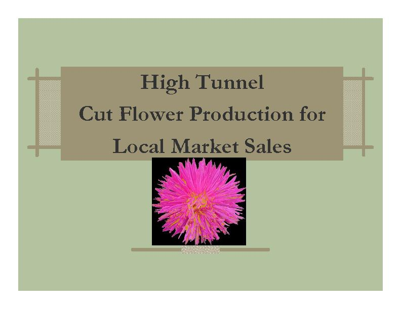 High Tunnel Cut Flower Production for Local Market Sales