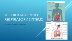 The digestive and respiratory systems