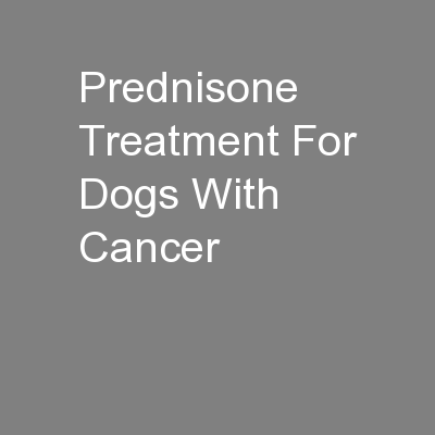 Prednisone Treatment For Dogs With Cancer