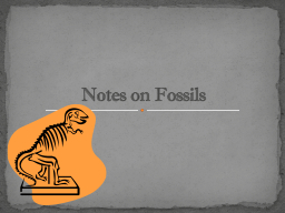 Notes on Fossils