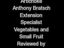 Specialty Crop Prole Globe Artichoke Anthony Bratsch Extension Specialist Vegetables and Small Fruit Reviewed by Ramn A
