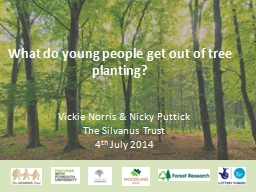 What do young people get out of tree planting?