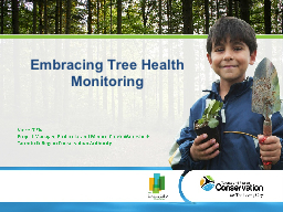Embracing Tree Health PowerPoint PPT Presentation