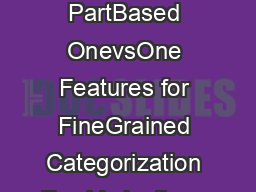 POOF PartBased OnevsOne Features for FineGrained Categorization Fac Verication a