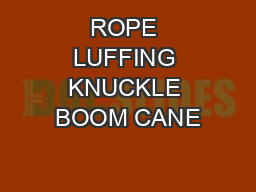 ROPE LUFFING KNUCKLE BOOM CANE