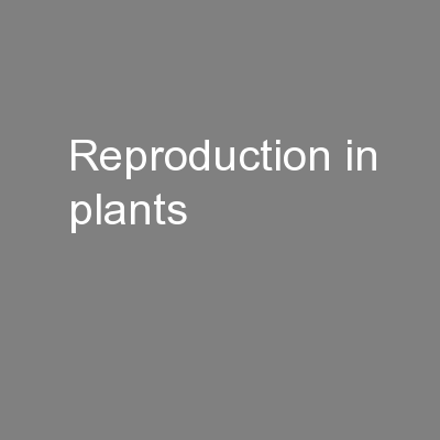 Reproduction in plants PowerPoint PPT Presentation