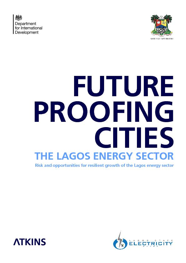 THE LAGOS ENERGY SECTOR