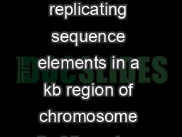 Indian Academy of Sciences RESEARCH ARTICLE Mapping autonomously replicating sequence elements in a kb region of chromosome II of the ssion yeast Schizosaccharomyces pombe VINAY KUMAR SRIVASTAVA and