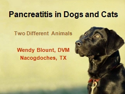 Pancreatitis in Dogs and Cats PowerPoint PPT Presentation