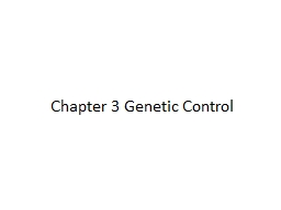 Chapter 3 Genetic Control PowerPoint PPT Presentation