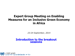 Expert Group Meeting on PowerPoint PPT Presentation