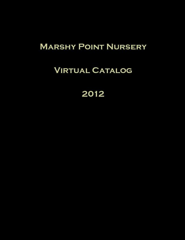 Marshy Point Nursery PowerPoint PPT Presentation