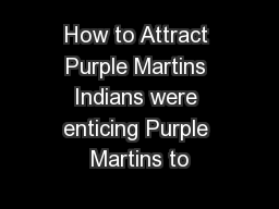 How to Attract Purple Martins Indians were enticing Purple Martins to