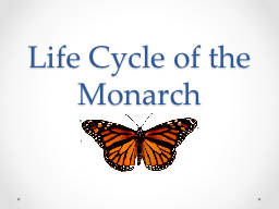Life Cycle of the Monarch Butterfly PowerPoint PPT Presentation