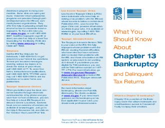 What You Should Know About and Delinquent Tax Returns Chapter  Bankruptcy Volunteer return preparation programs are provided through partnerships between the IRS and community based organizations