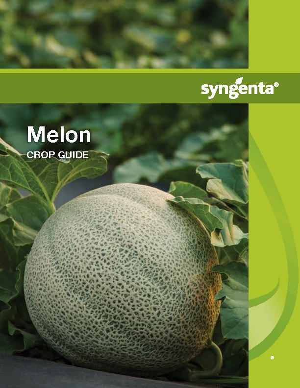 Melon CROP GUIDE