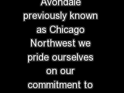 At Central Bark Chicago Avondale previously known as Chicago Northwest we pride ourselves on our commitment to training and outstanding service