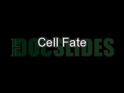 Cell Fate PowerPoint PPT Presentation