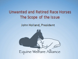 Unwanted and Retired Race Horses