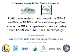 Radiative transfer simulations of the
