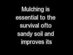 Mulching is essential to the survival ofto sandy soil and improves its