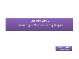 Lab Activity 2 PowerPoint PPT Presentation