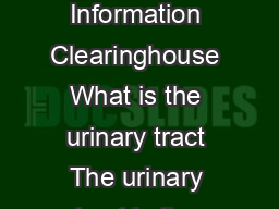 Urine Blockage in Newborns National Kidney and Urologic Diseases Information Clearinghouse What is the urinary tract The urinary tract is the bodys drainage system for removing wastes and extra uid