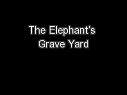 The Elephant's Grave Yard