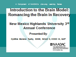 Introduction to the Brain Model: Romancing the Brain