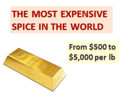 THE MOST EXPENSIVE SPICE IN THE WORLD