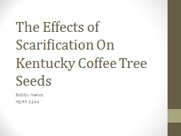 The Effects of Scarification On Kentucky Coffee Tree Seeds PowerPoint PPT Presentation