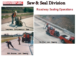 Saw & Seal Division PowerPoint PPT Presentation