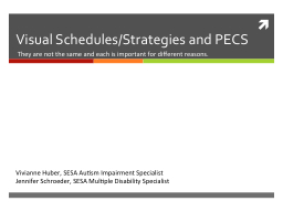 Visual Schedules/Strategies and PECS