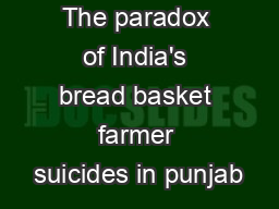 The paradox of India's bread basket farmer suicides in punjab