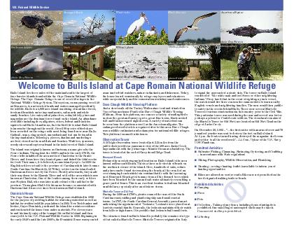 elcome to Bulls Island at Cape Romain National Wildlife Refuge U PowerPoint PPT Presentation