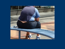Re…broader fight against obesity, which is a burden on th