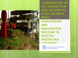 CONTRIBUTION OF TEA PRODUCTION AND EXPORTS TO FOOD SECURITY