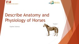 Describe Anatomy and Physiology of Horses