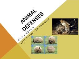 animal defenses Discover defense mechanisms your livestock and wildlife use to fend for themselves.