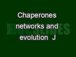 Chaperones networks and evolution  J
