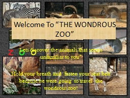"Welcome To ""THE WONDROUS ZOO"""