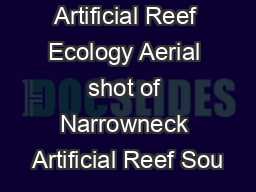 Narrowneck Artificial Reef Ecology Aerial shot of Narrowneck Artificial Reef Sou PowerPoint PPT Presentation
